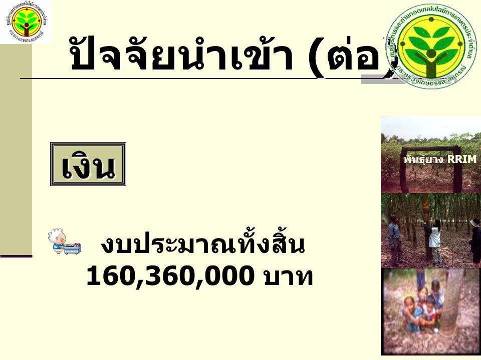 ปัจจัยนำเข้า ( ต่อ ) เงิน งบประมาณทั้งสิ้น 160,360,000 บาท พันธุ์ยาง RRIM 600