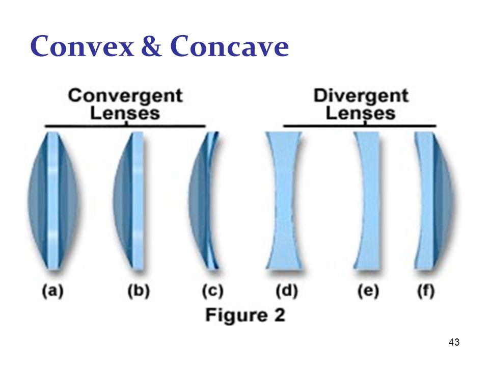 43 Convex & Concave