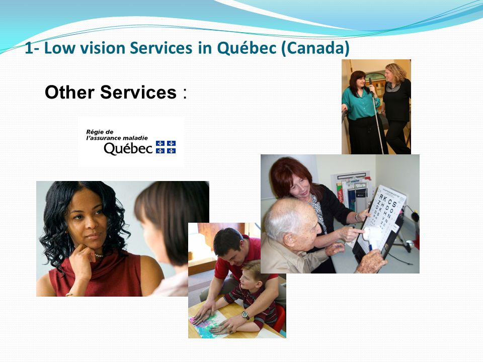 1- Low vision Services in Québec (Canada) Other Services :