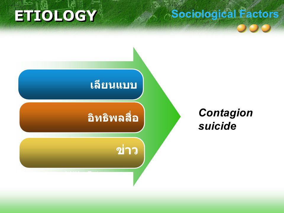 เลียนแบบ อิทธิพลสื่อ ข่าว Add Your Text Sociological Factors ETIOLOGY Contagion suicide