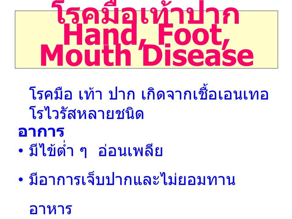 โรคมือเท้าปาก Hand, Foot, Mouth Disease โรคมือ เท้า ปาก เกิดจากเชื้อเอนเทอ โรไวรัสหลายชนิด อาการ มีไข้ต่ำ ๆ อ่อนเพลีย มีอาการเจ็บปากและไม่ยอมทาน อาหาร จะพบตุ่มหรือผื่น