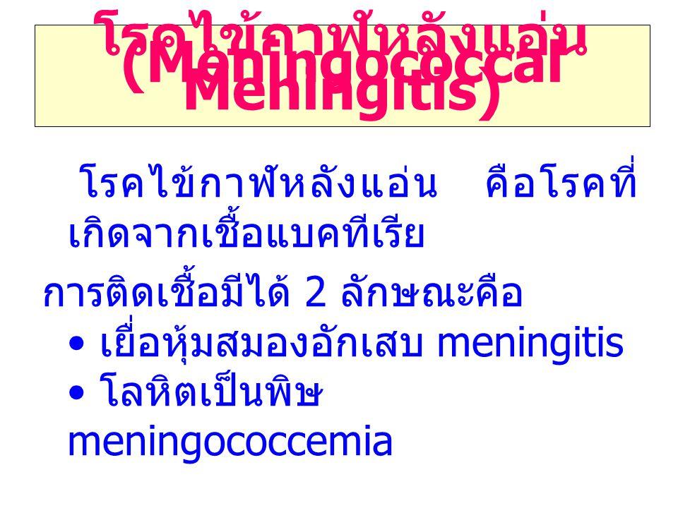 โรคไข้กาฬหลังแอ่น (Meningococcal Meningitis) โรคไข้กาฬหลังแอ่น คือโรคที่ เกิดจากเชื้อแบคทีเรีย การติดเชื้อมีได้ 2 ลักษณะคือ เยื่อหุ้มสมองอักเสบ meningitis โลหิตเป็นพิษ meningococcemia