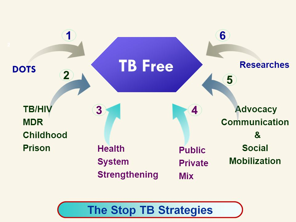2 DOTS TB/HIV MDR Childhood Prison Health System Strengthening Public Private Mix Advocacy Communication & Social Mobilization Researches 1 2 34 6 5 TB Free