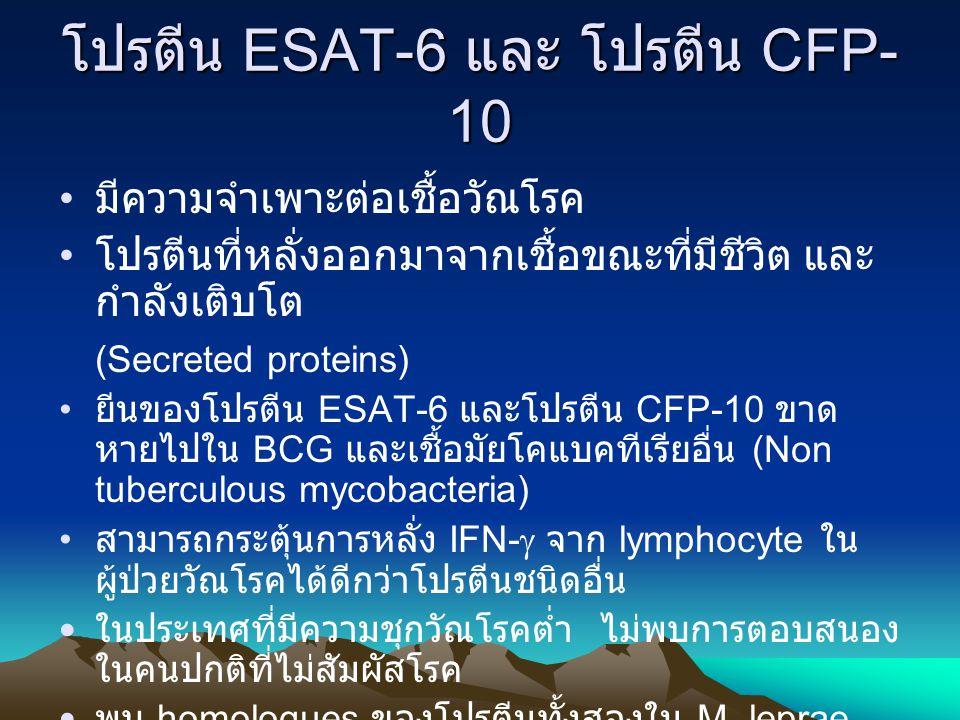 การตอบสนอง IFN-  ต่อโปรตีน ESAT-6 และโปรตีน CFP-10 ในผู้ป่วย วัณโรค ระยะกำเริบ และระยะสงบ DxMediaPPDESAT-6CFP-10 ExTB 24 h0.02overt0.380.03 6 d0.03overt0.500.03 Rx TB 24 h0.022.860.220.10 6 d0.25overt0.780.58