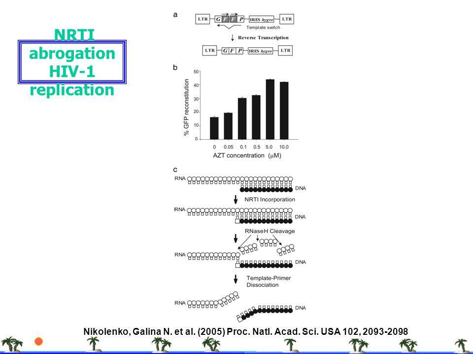 Nikolenko, Galina N. et al. (2005) Proc. Natl. Acad. Sci. USA 102, 2093-2098 NRTI abrogation HIV-1 replication