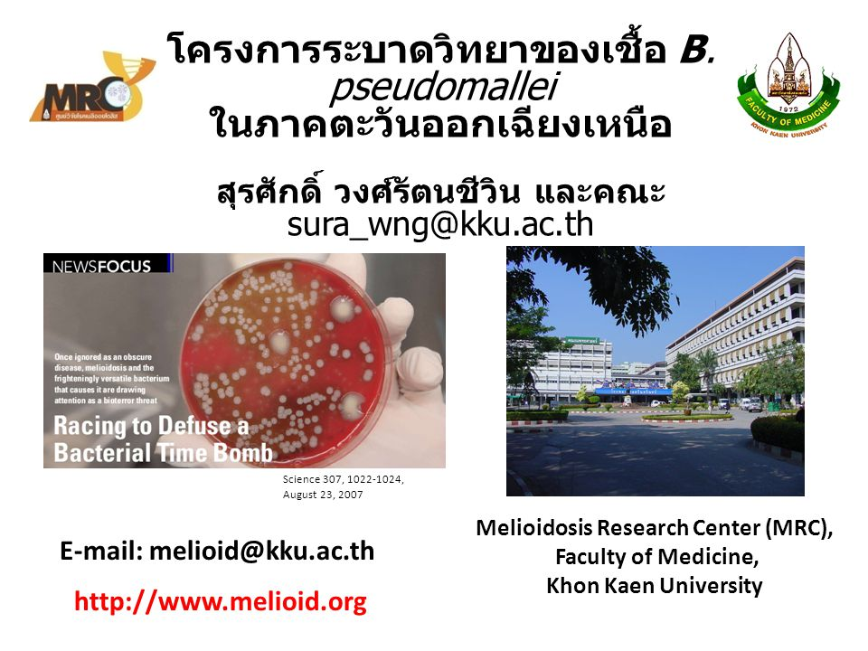 Conclusion More than 2,465 melioidosis confirmed cases were found only in the NE, Thailand.