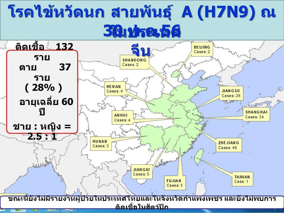 โรคไข้หวัดนก สายพันธุ์ A (H7N9) ณ 30 พ. ค.56 ในประเทศ จีน ในประเทศ จีน ขณะนี้ยังไม่มีรายงานผู้ป่วยในประเทศไทยและในจังหวัดกำแพงเพชร และยังไม่พบการ ติดเ