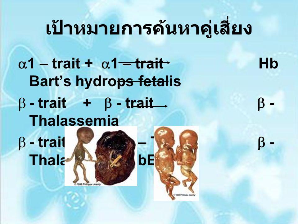 เป้าหมายการค้นหาคู่เสี่ยง  1 – trait +  1 – trait Hb Bart's hydrops fetalis  - trait +  - trait  - Thalassemia  - trait + HbE – Trait  - Thalas