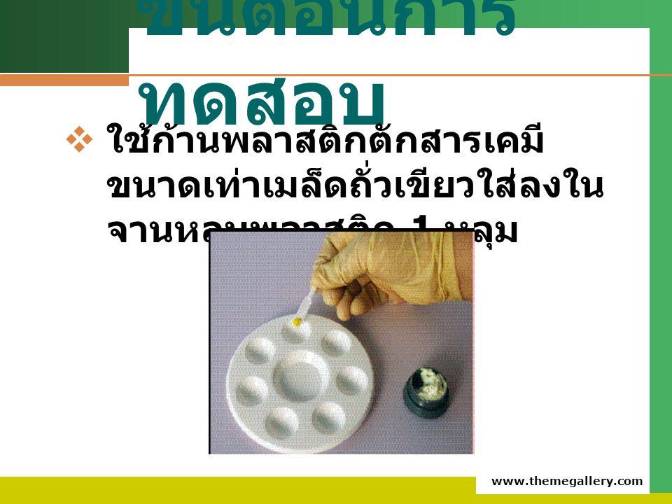 www.themegallery.com ขั้นตอนการ ทดสอบ  ใช้ก้านพลาสติกตักสารเคมี ขนาดเท่าเมล็ดถั่วเขียวใส่ลงใน จานหลุมพลาสติก 1 หลุม