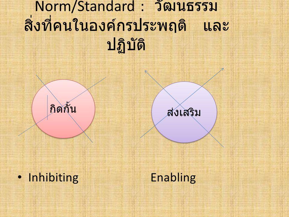 Norm/Standard : วัฒนธรรม สิ่งที่คนในองค์กรประพฤติ และ ปฏิบัติ Inhibiting Enabling กิดกั้น ส่งเสริม