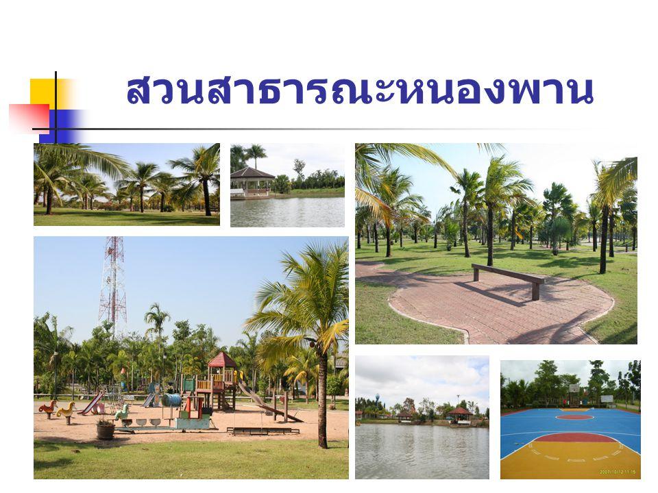 สวนสาธารณะหนองพาน