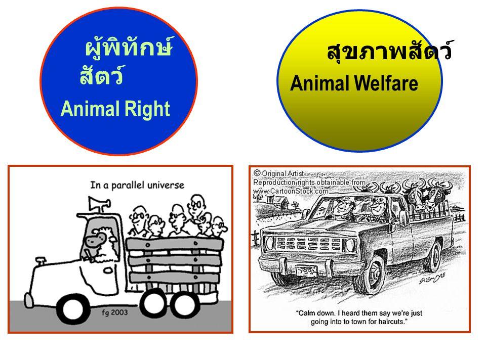 ผู้พิทักษ์ สัตว์ Animal Right สุขภาพสัตว์ Animal Welfare