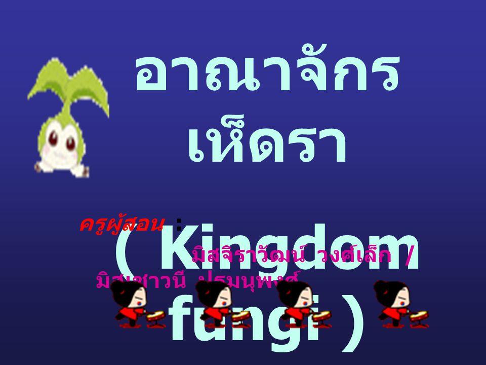 อาณาจักร เห็ดรา ( Kingdom fungi ) ครูผู้สอน : มิสจิราวัฒน์ วงศ์เล็ก / มิสเชาวนี ปฐมนุพงศ์