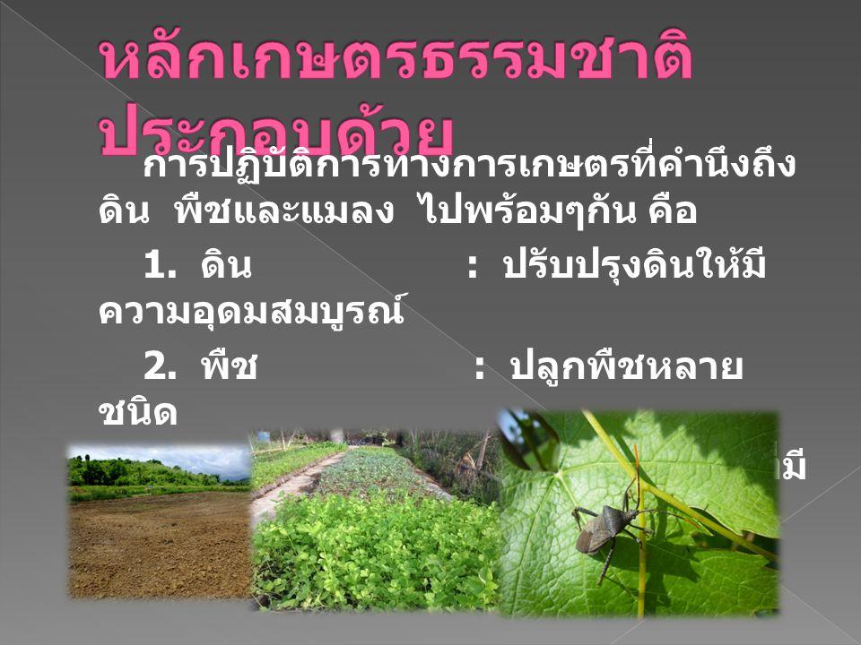 6. เป็นการเกษตรที่คำนึงถึงผู้บริโภคและ ลูกหลานในอนาคต 7. เป็นการลดความเสี่ยงเนื่องจากเป็นการทำ การเกษตรที่ให้ผลผลิตแบบผสมผสานและมี ความยั่งยืน 8. ทำให