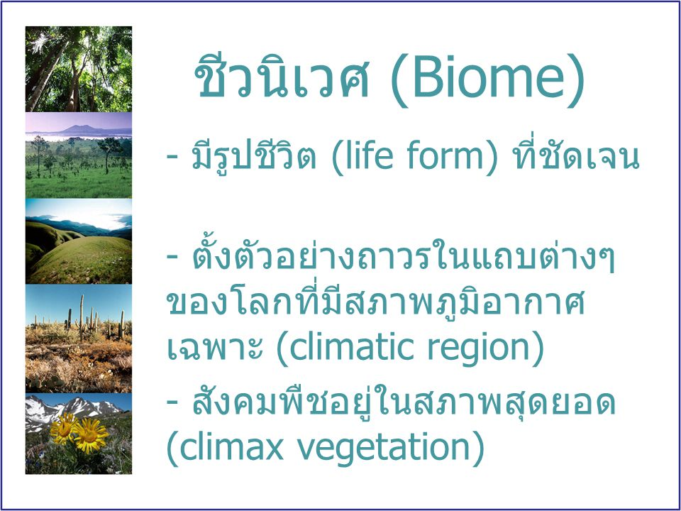 How many biomes are there?
