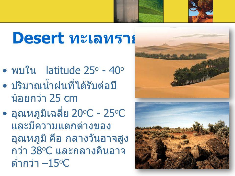 Desert ทะเลทราย พบใน latitude 25 o - 40 o ปริมาณน้ำฝนที่ได้รับต่อปี น้อยกว่า 25 cm อุณหภูมิเฉลี่ย 20 o C - 25 o C และมีความแตกต่างของ อุณหภูมิ คือ กลา