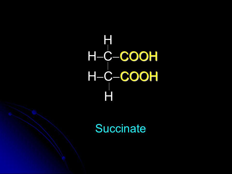 COOH C  COOH COOH H  C  COOH H HH Succinate H