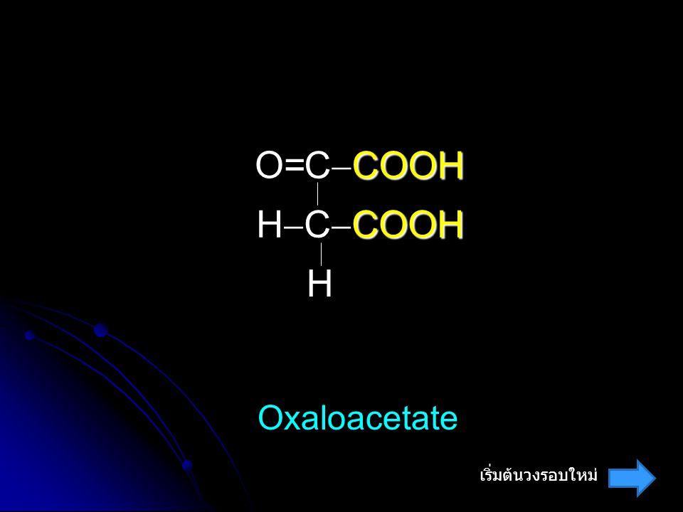 COOH C  COOH COOH H  C  COOH O= H Oxaloacetate เริ่มต้นวงรอบใหม่