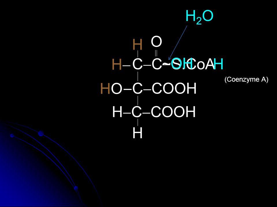 COOH C  COOH HOCOOH HO  C  COOH COOH H  C  COOH H HH H Tricarboxylic Acid Citric Acid