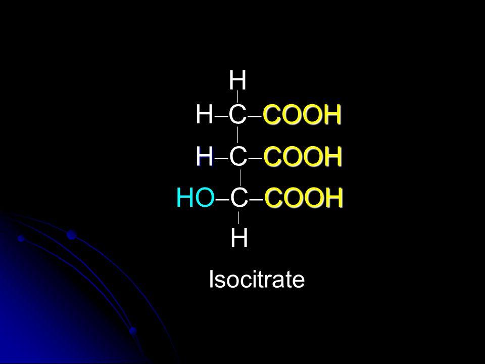 COOH C  COOH HCOOH H  C  COOH COOH  C  COOH H HH H Isocitrate HO