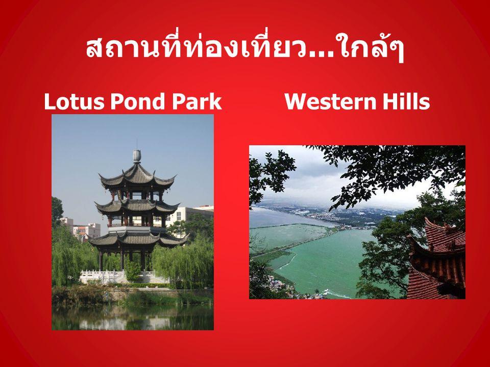 สถานที่ท่องเที่ยว... ใกล้ๆ Lotus Pond ParkWestern Hills