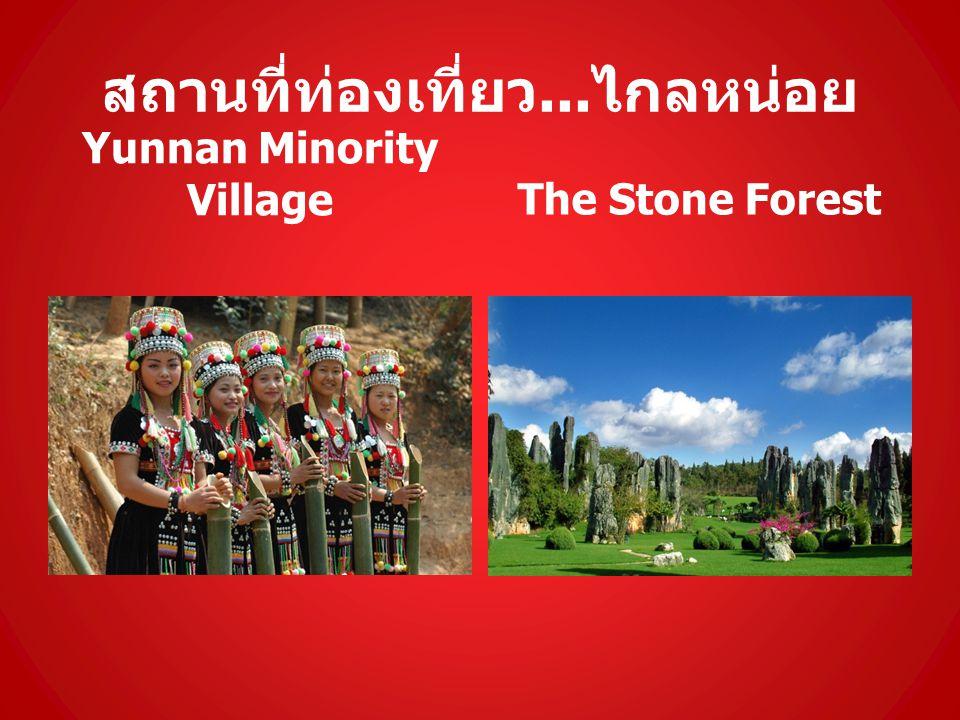 สถานที่ท่องเที่ยว... ไกลหน่อย Yunnan Minority VillageThe Stone Forest