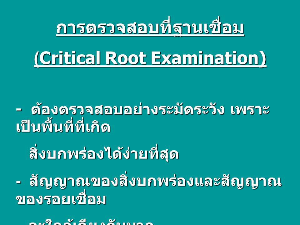 การตรวจสอบที่ฐานเชื่อม (Critical Root Examination) - ต้องตรวจสอบอย่างระมัดระวัง เพราะ เป็นพื้นที่ที่เกิด สิ่งบกพร่องได้ง่ายที่สุด สิ่งบกพร่องได้ง่ายที่สุด - สัญญาณของสิ่งบกพร่องและสัญญาณ ของรอยเชื่อม จะใกล้เคียงกันมาก จะใกล้เคียงกันมาก