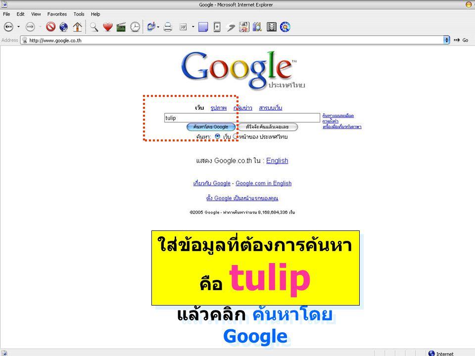 ใส่ข้อมูลที่ต้องการค้นหา คือ tulip แล้วคลิก ค้นหาโดย Google ใส่ข้อมูลที่ต้องการค้นหา คือ tulip แล้วคลิก ค้นหาโดย Google