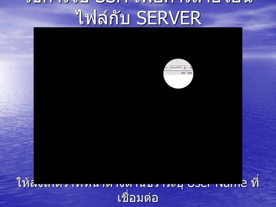 วิธีการใช้ SSH เพื่อการถ่ายโอน ไฟล์กับ SERVER ให้สังเกตว่าที่หน้าต่างด้านขวาระบุ User Name ที่ เชื่อมต่อ