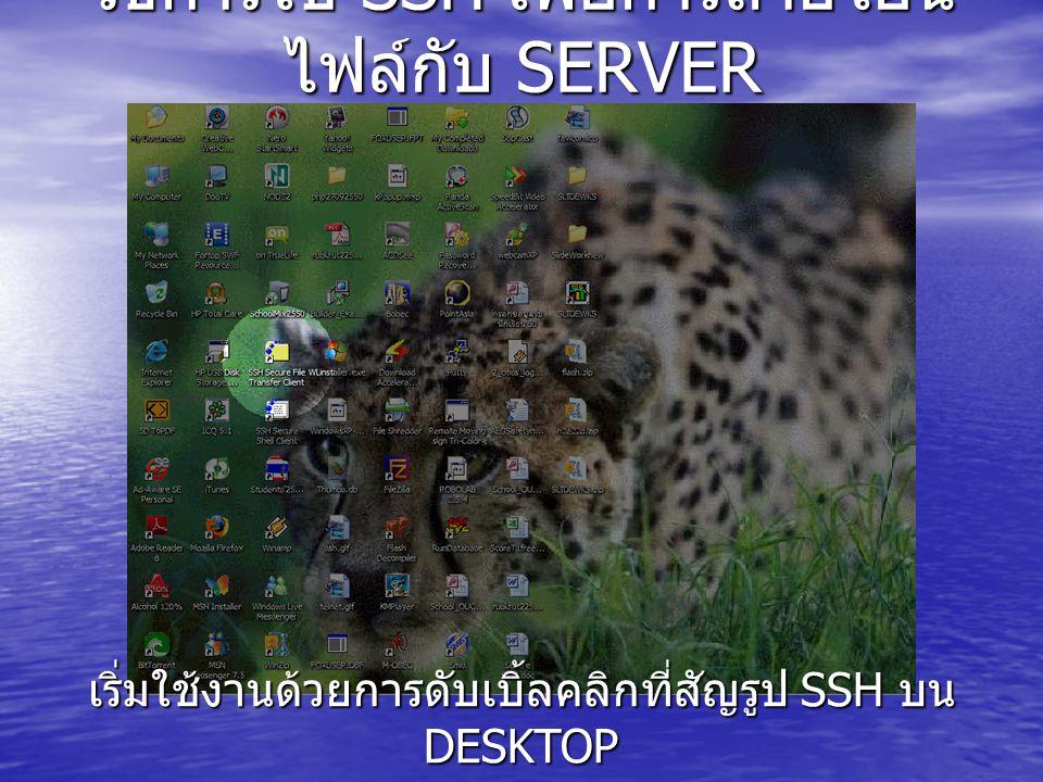 วิธีการใช้ SSH เพื่อการถ่ายโอน ไฟล์กับ SERVER เริ่มใช้งานด้วยการดับเบิ้ลคลิกที่สัญรูป SSH บน DESKTOP