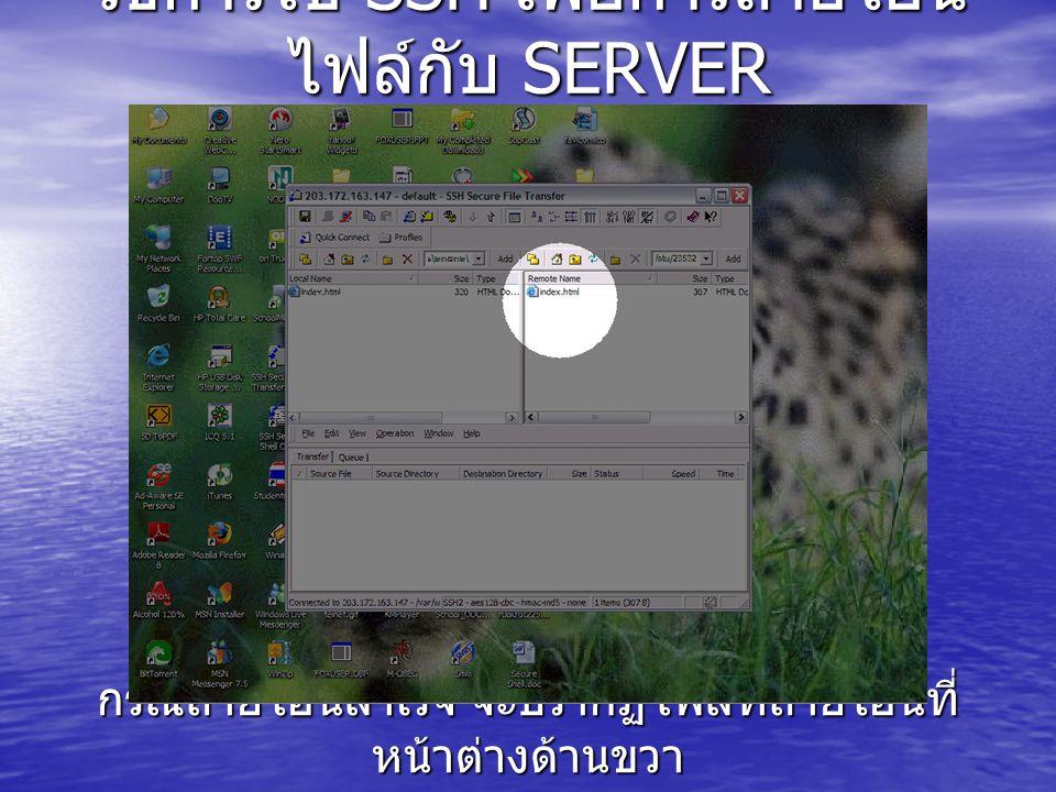 วิธีการใช้ SSH เพื่อการถ่ายโอน ไฟล์กับ SERVER กรณีถ่ายโอนสำเร็จ จะปรากฏไฟล์ที่ถ่ายโอนที่ หน้าต่างด้านขวา