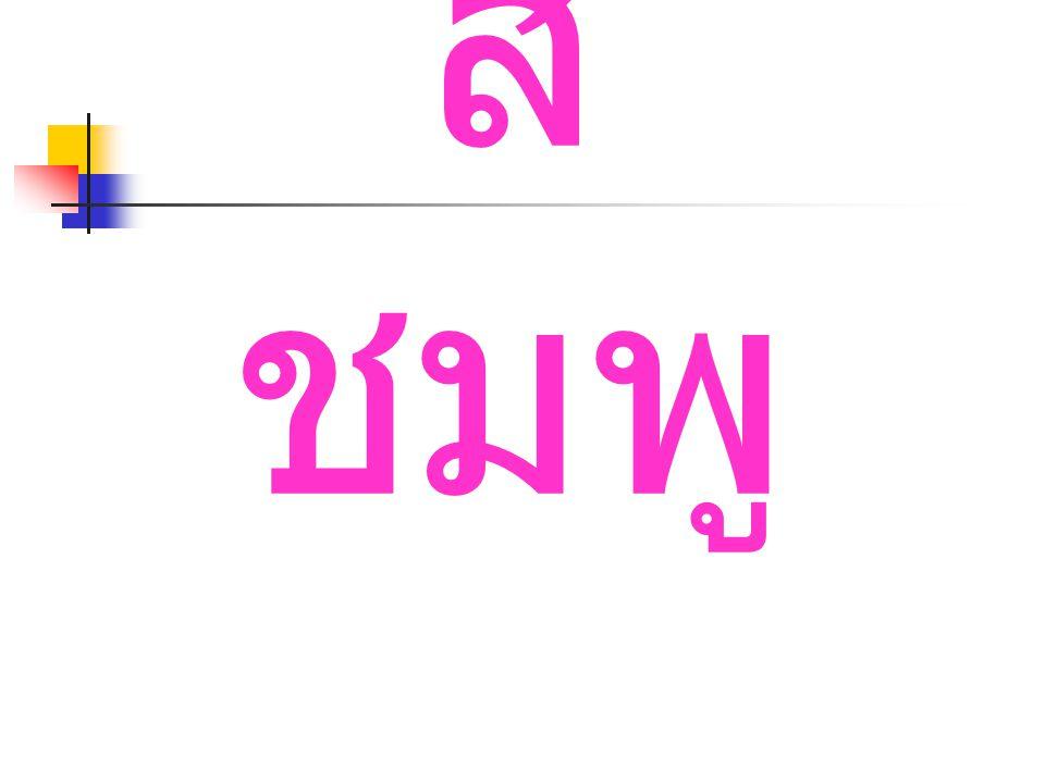 สี ชมพู