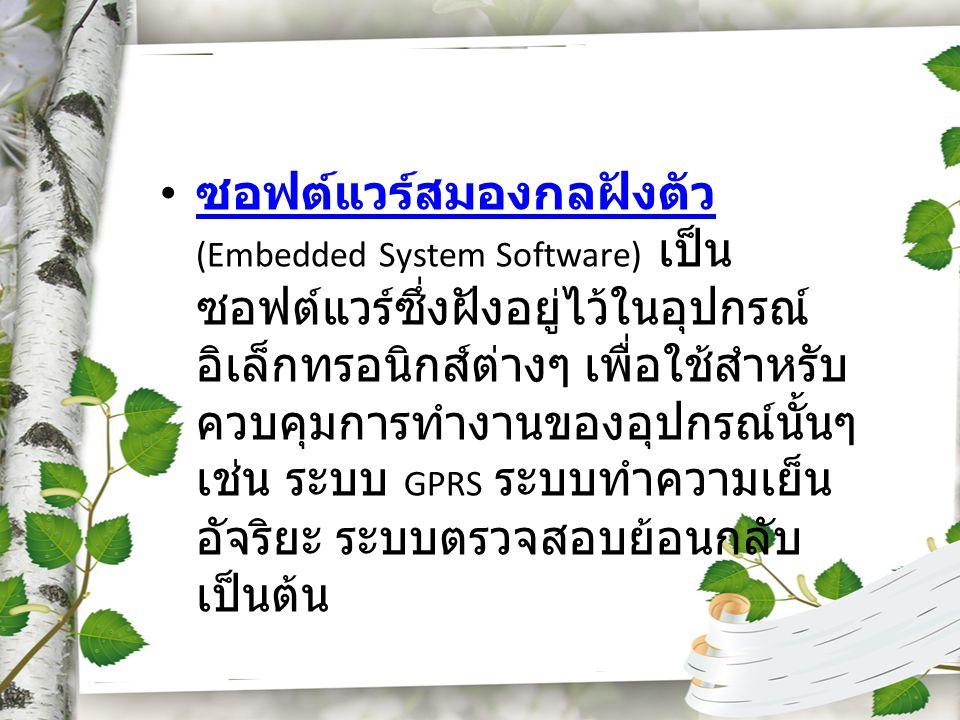 ซอฟต์แวร์สมองกลฝังตัว (Embedded System Software) เป็น ซอฟต์แวร์ซึ่งฝังอยู่ไว้ในอุปกรณ์ อิเล็กทรอนิกส์ต่างๆ เพื่อใช้สำหรับ ควบคุมการทำงานของอุปกรณ์นั้น