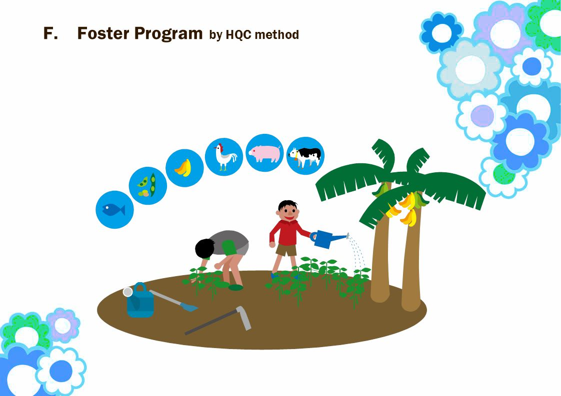 F.Foster Program by HQC method