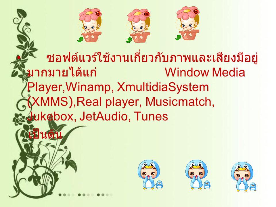 ซอฟต์แวร์ใช้งานเกี่ยวกับภาพและเสียงมีอยู่ มากมายได้แก่ Window Media Player,Winamp, XmultidiaSystem (XMMS),Real player, Musicmatch, Jukebox, JetAudio, Tunes เป็นต้น