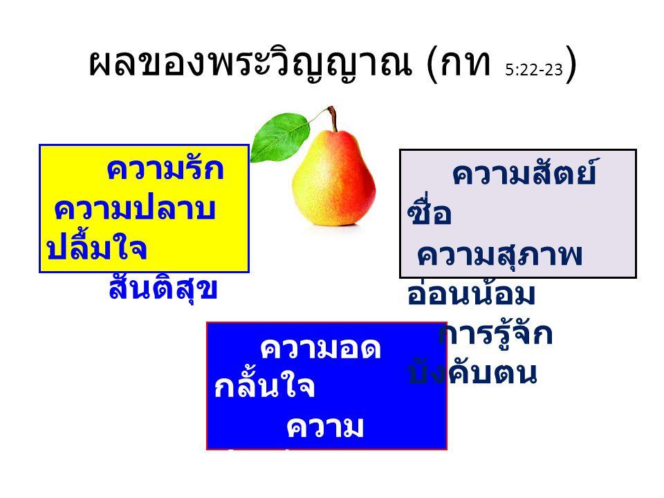 รู้จักต้นไม้ด้วยผลของมัน มธ 7:15-20 ต้นไม้ดีย่อมให้ผลดี ต้นไม้เลวย่อมให้ผลเลว ท่านจะรู้จักเขาด้วยผล ของเขา มธ 12:33 ต้นดีผลก็ดี หรือต้นเลว ผลก็เลวด้วย เราจะรู้จักต้นไม้ด้วยผล ของมัน