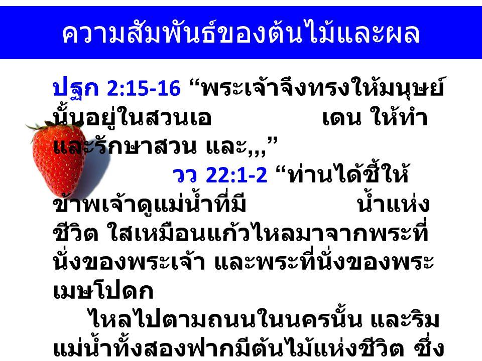 ความสัมพันธ์ของต้นไม้และผล ปฐก 2:15-16 พระเจ้าจึงทรงให้มนุษย์ นั้นอยู่ในสวนเอ เดน ให้ทำ และรักษาสวน และ,,, วว 22:1-2 ท่านได้ชี้ให้ ข้าพเจ้าดูแม่น้ำที่มี น้ำแห่ง ชีวิต ใสเหมือนแก้วไหลมาจากพระที่ นั่งของพระเจ้า และพระที่นั่งของพระ เมษโปดก ไหลไปตามถนนในนครนั้น และริม แม่น้ำทั้งสองฟากมีต้นไม้แห่งชีวิต ซึ่ง ออกผลสิบสองชนิด ออกผลทุกๆเดือน และใบของต้นไม้นั้นสำหรับรักษาบรรดา ประชาชาติให้หาย