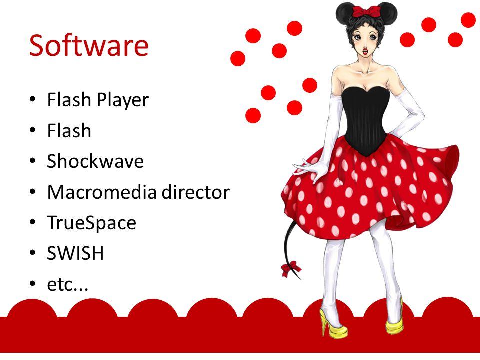 Software Flash Player Flash Shockwave Macromedia director TrueSpace SWISH etc...