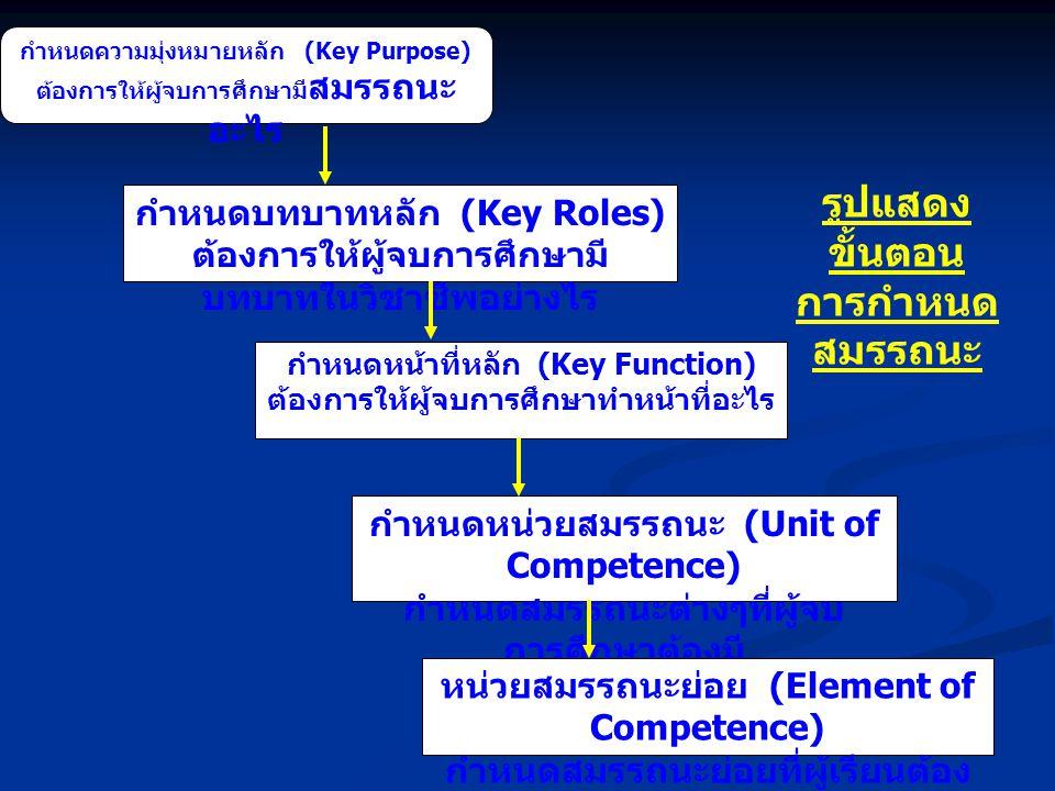 กำหนดความมุ่งหมายหลัก (Key Purpose) ต้องการให้ผู้จบการศึกษามี สมรรถนะ อะไร กำหนดบทบาทหลัก (Key Roles) ต้องการให้ผู้จบการศึกษามี บทบาทในวิชาชีพอย่างไร