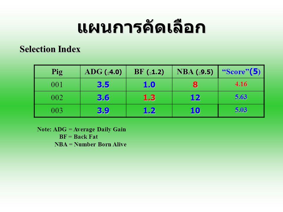 Selection index สามารถแบ่งได้เป็น 2 รูปแบบดังนี้ 1.