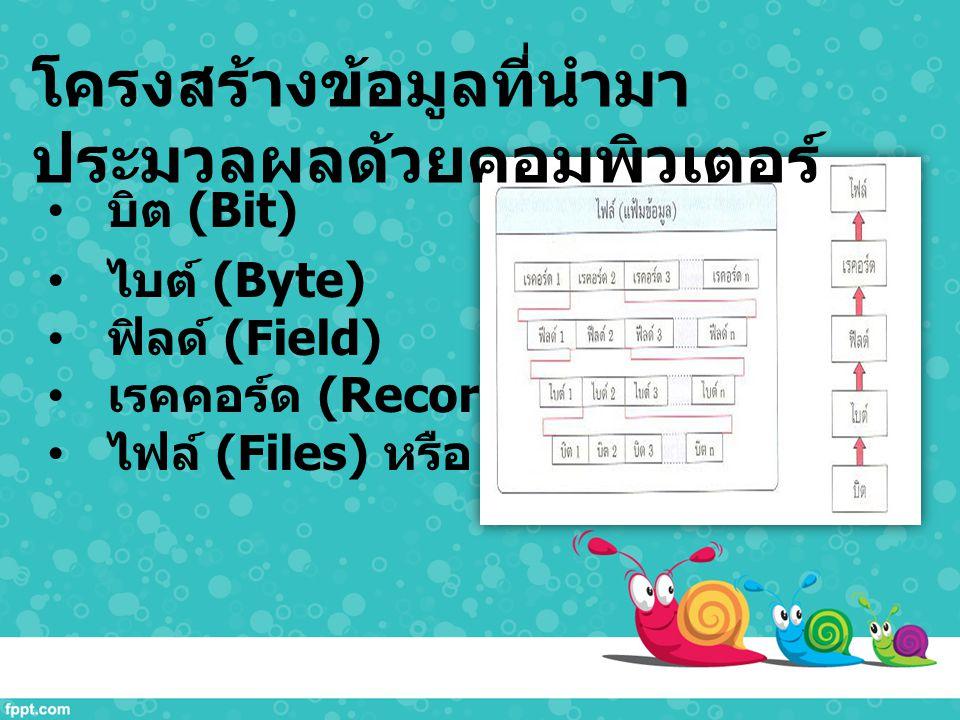 บิต (Bit) ไบต์ (Byte) ฟิลด์ (Field) เรคคอร์ด (Record) ไฟล์ (Files) หรือ แฟ้มข้อมูล โครงสร้างข้อมูลที่นำมา ประมวลผลด้วยคอมพิวเตอร์