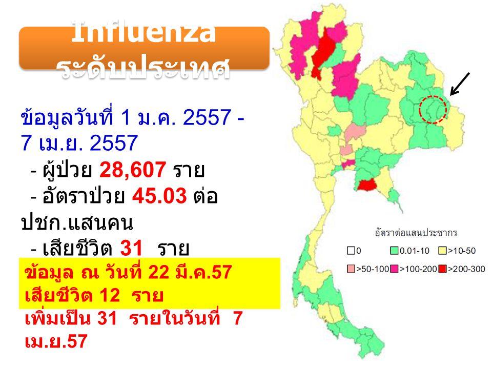 วันที่ 1 ม.ค. 57 - 30 มี. ค. 57 - จำนวนทั้งสิ้น 42 ราย - อัตราป่วย 7.77 ต่อ ปชก.