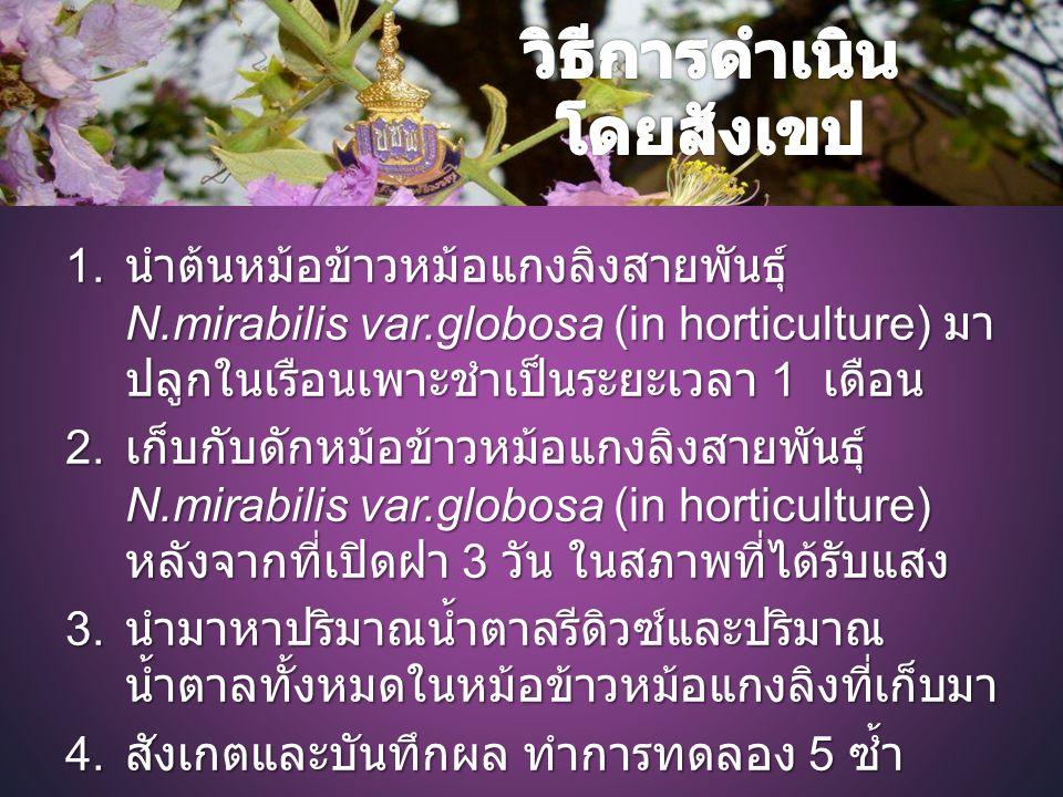 1. นำต้นหม้อข้าวหม้อแกงลิงสายพันธุ์ N.mirabilis var.globosa (in horticulture) มา ปลูกในเรือนเพาะชำเป็นระยะเวลา 1 เดือน 2. เก็บกับดักหม้อข้าวหม้อแกงลิง