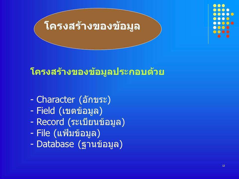 12 โครงสร้างของข้อมูล โครงสร้างของข้อมูลประกอบด้วย - Character (อักขระ) - Field (เขตข้อมูล) - Record (ระเบียนข้อมูล) - File (แฟ้มข้อมูล) - Database (ฐานข้อมูล)