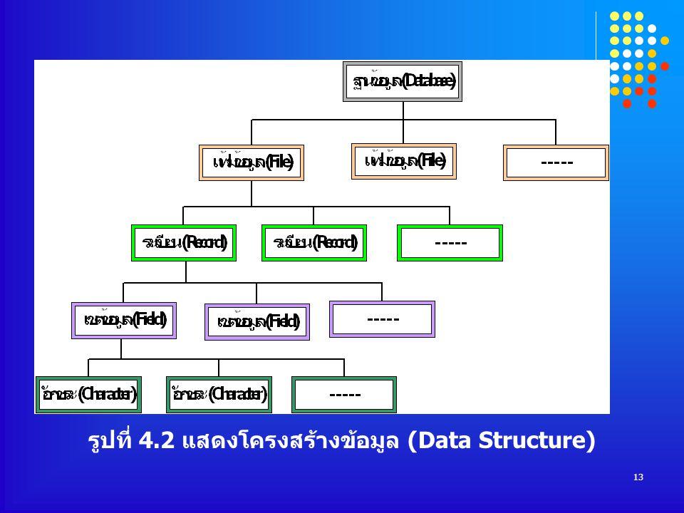 13 รูปที่ 4.2 แสดงโครงสร้างข้อมูล (Data Structure)