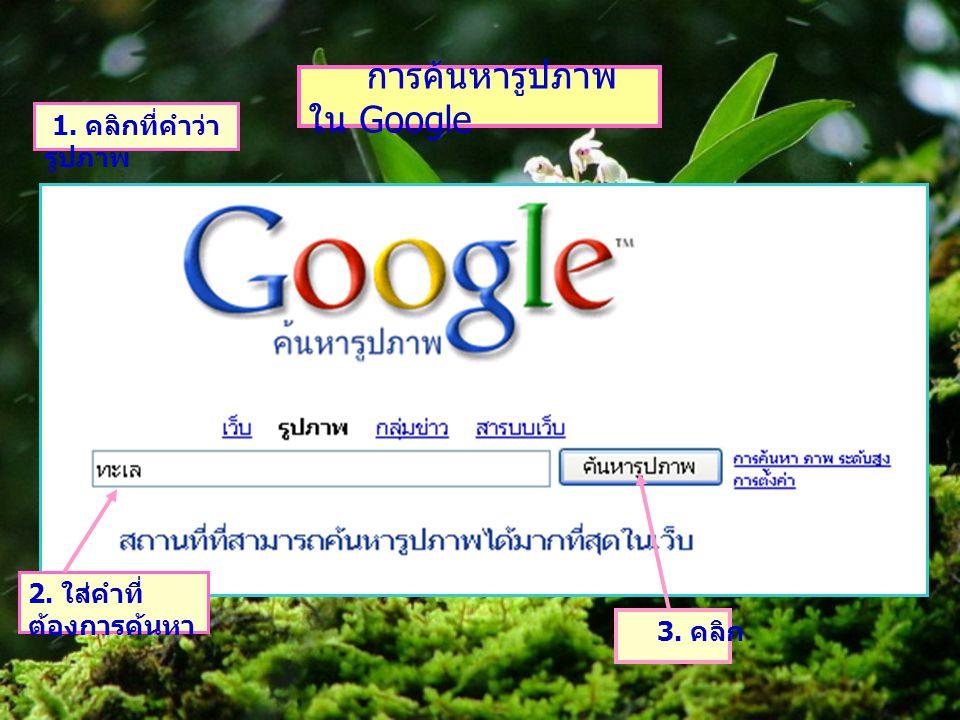 การค้นหารูปภาพ ใน Google 1. คลิกที่คำว่า รูปภาพ 2. ใส่คำที่ ต้องการค้นหา 3. คลิก