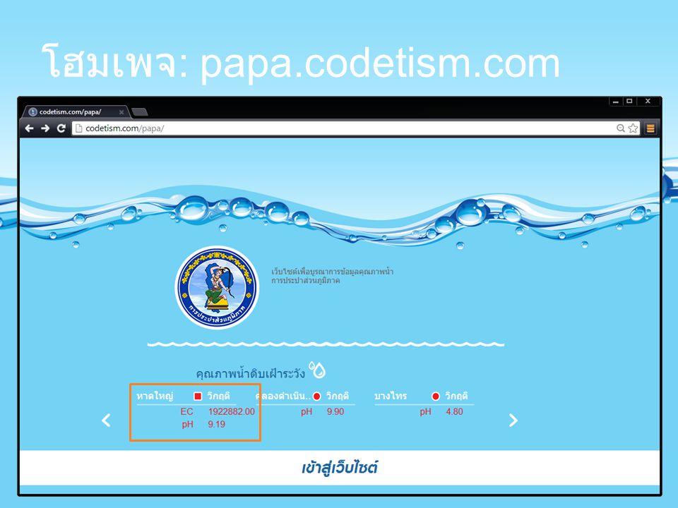 โฮมเพจ : papa.codetism.com