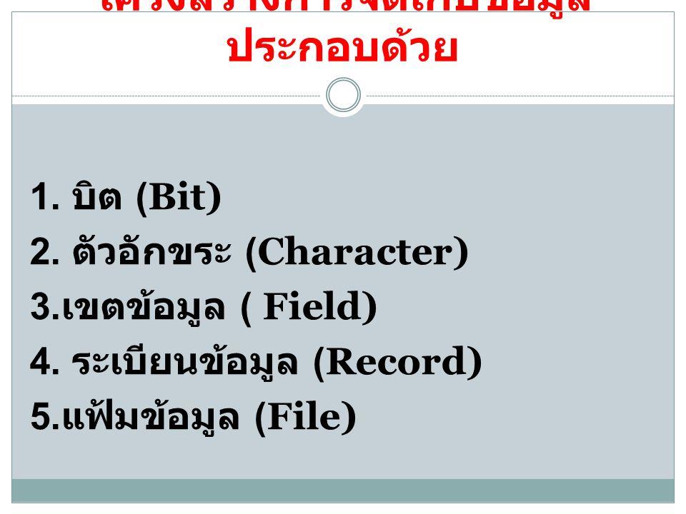โครงสร้างการจัดเก็บข้อมูล ประกอบด้วย 1. บิต (Bit) 2. ตัวอักขระ (Character) 3. เขตข้อมูล ( Field) 4. ระเบียนข้อมูล (Record) 5. แฟ้มข้อมูล (File)
