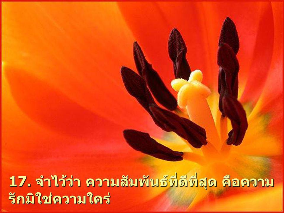 17. จําไววา ความสัมพันธที่ดีที่สุด คือความ รักมิใชความใคร