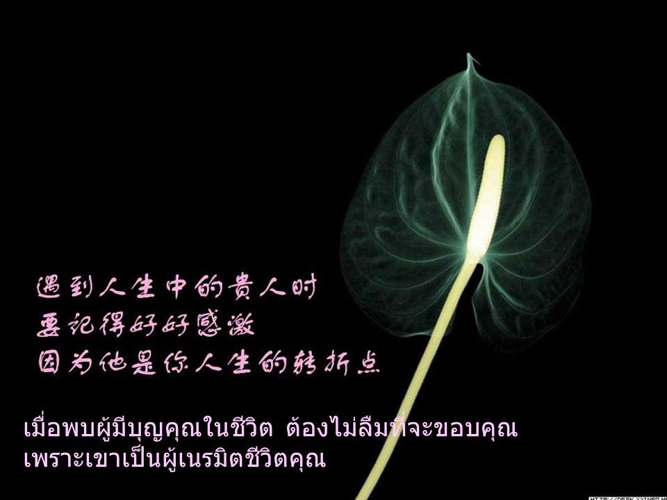 เมื่อพบผู้มีบุญคุณในชีวิต ต้องไม่ลืมที่จะขอบคุณ เพราะเขาเป็นผู้เนรมิตชีวิตคุณ